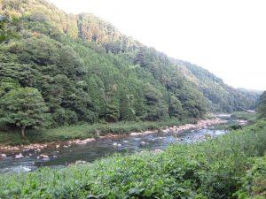名張市の川